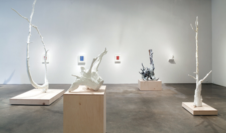 Installation view of Object I Nature Photo: Wes Magyar, courtesy Robischon Gallery